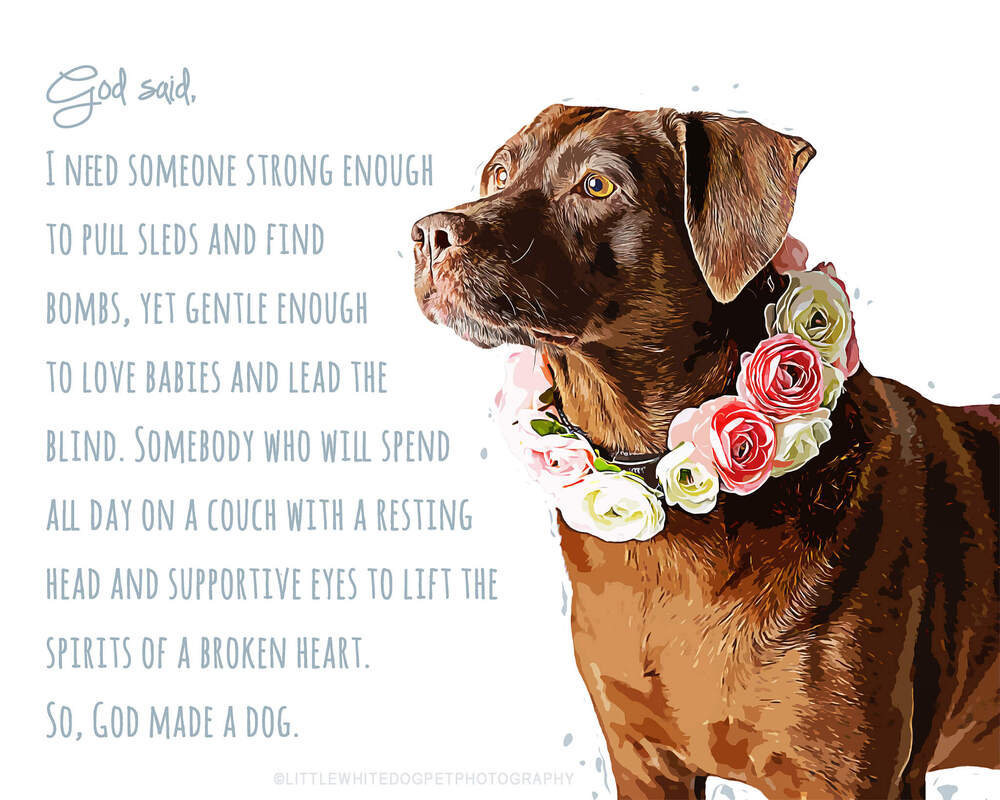 Art rendering of a chocolate lab.