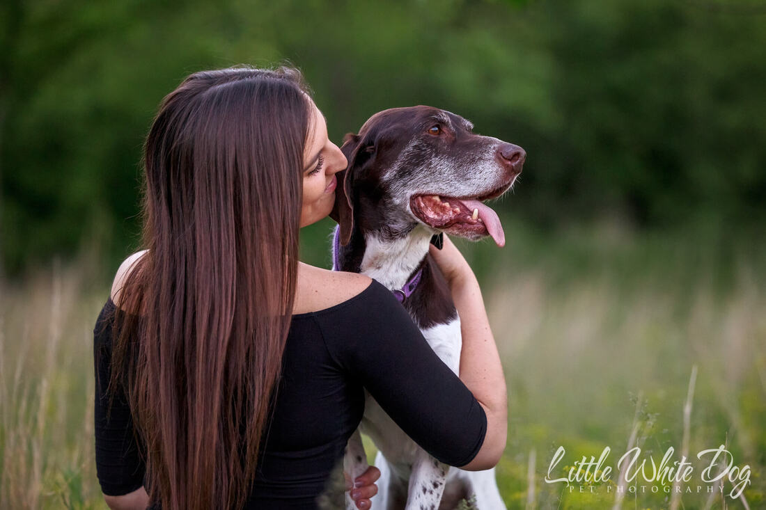 Australian shepherd puppy laying between her owners feet looking at the camera