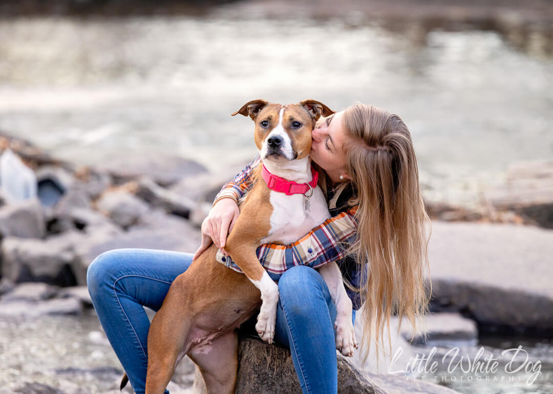 A girl kissing her new pitbull rescue dog while sitting on the rocks by the water